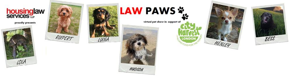 Law Paws
