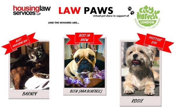 LAWS PAWS WINNERS